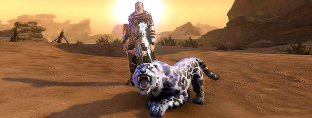 companion sale for neverwinter astral diamonds hunting